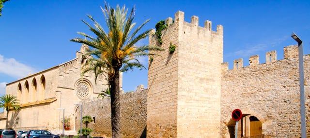 Free tour por Alcudia
