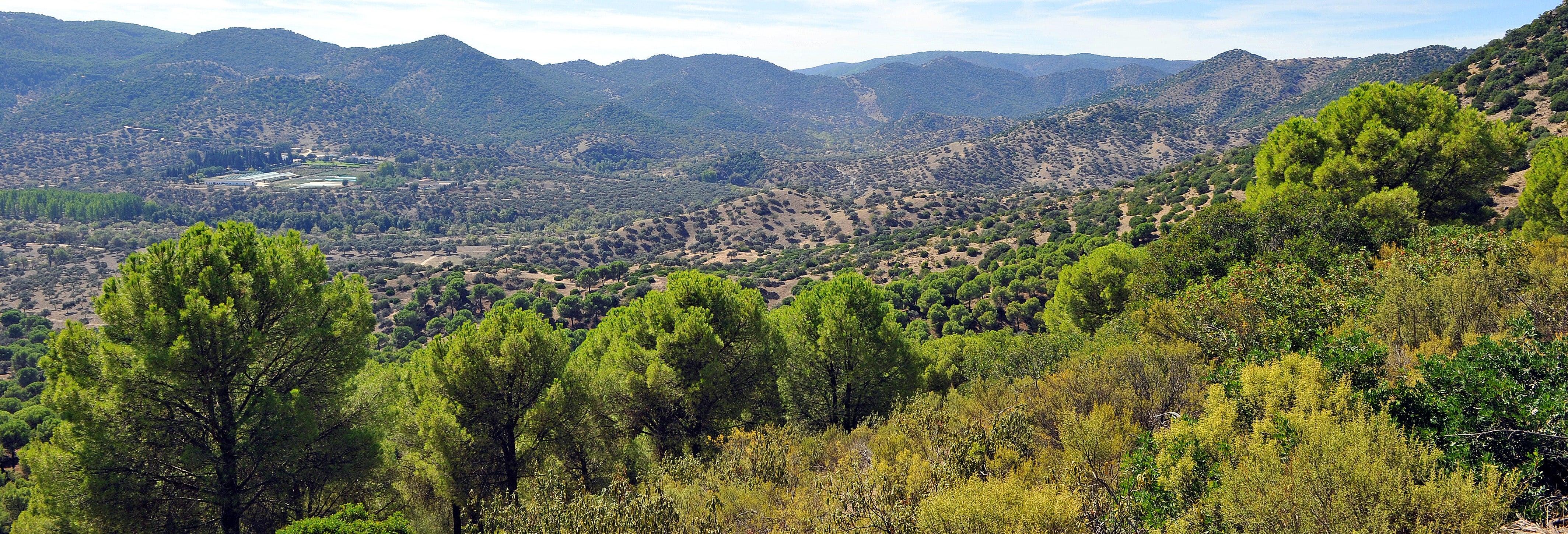 Tour en 4x4 por la Sierra de Andújar