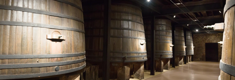 Tour por el Museo del Vino de Aranda de Duero