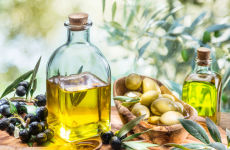 Olive Culture Museum and Oil Mill Tour