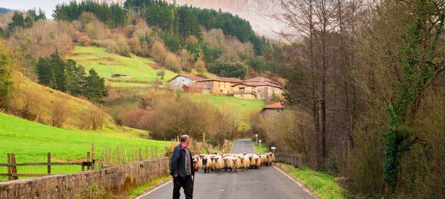 Elorrio, Oñati y el Santuario de Arantzazu