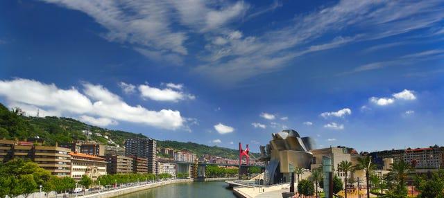 Tour privado por el Museo Guggenheim