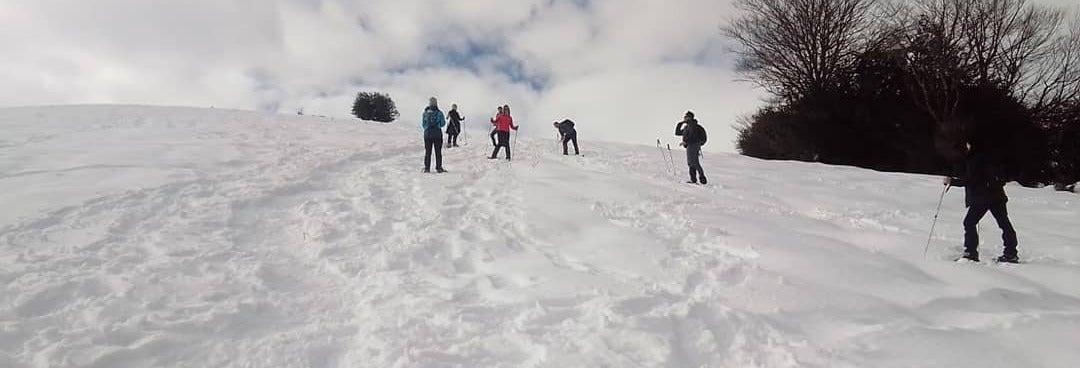 Passeio com raquetes de neve por Alto Campoo