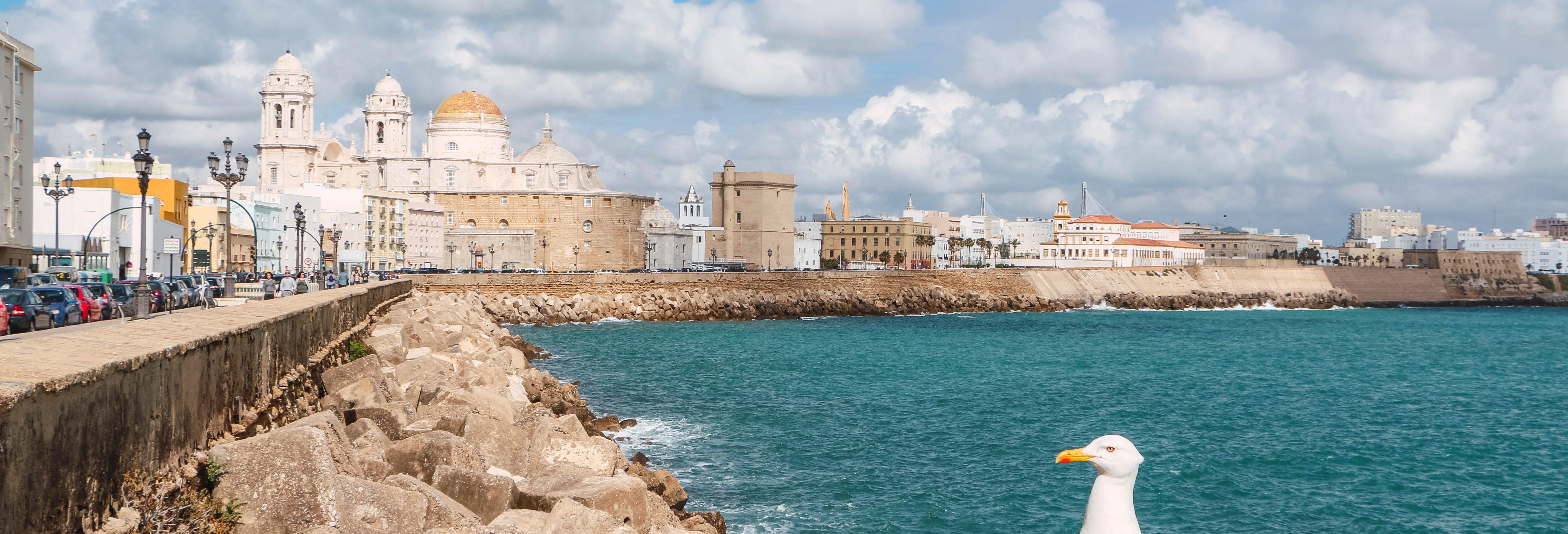 Tour privado por Cádiz ¡Tú eliges!