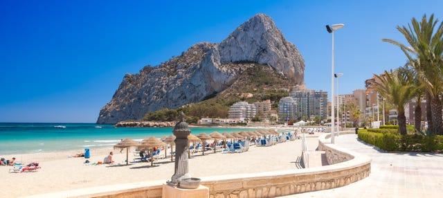Catamaran Trip in Calp