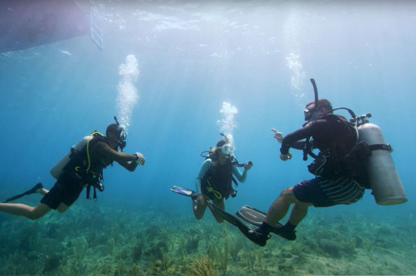 During the PADI Open Water course