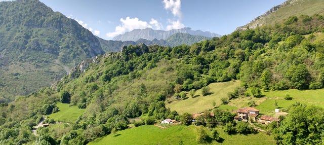 Excursión al Parque Natural de Ponga