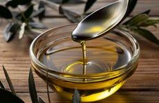 Visita a un olivar y una almazara + Cata de aceites