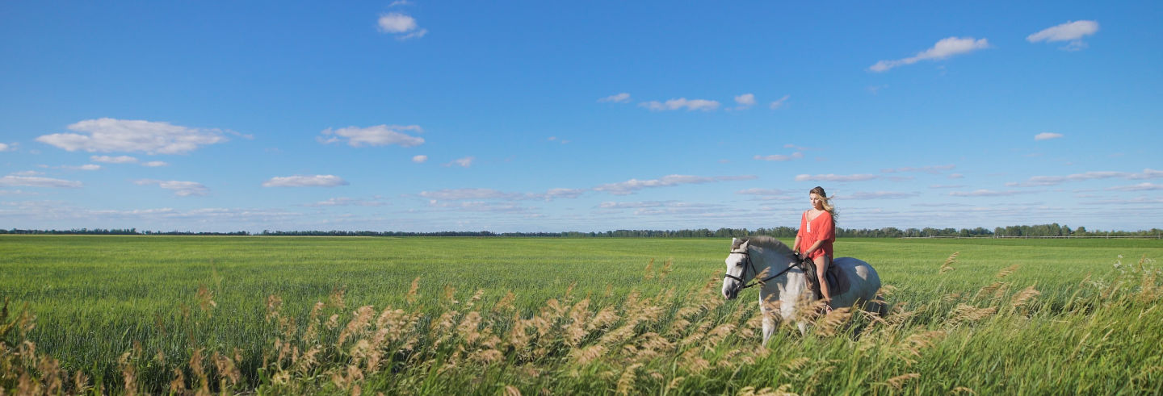 Paseo a caballo por la Vereda de Trassierra