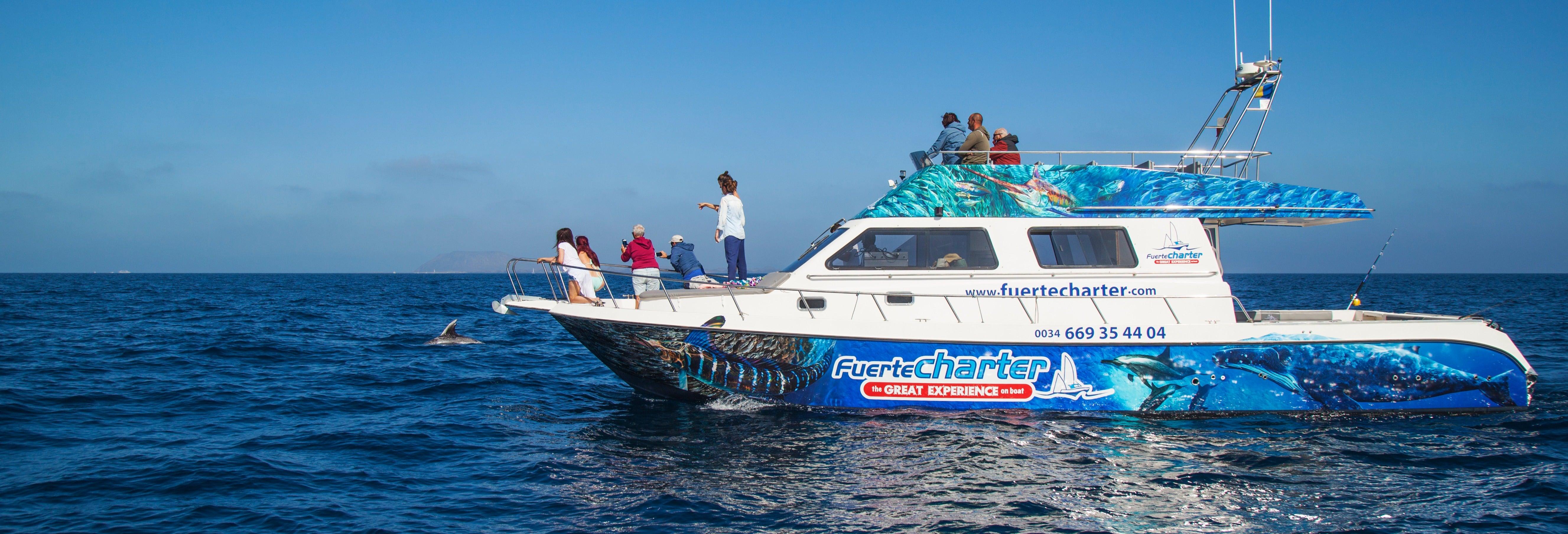 Whale Watching Catamaran Tour