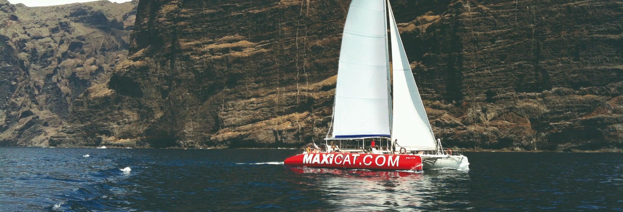 Passeio de catamarã por Los Gigantes, Costa Adeje e Masca