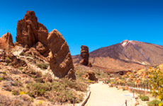 Excursión al Teide desde el sur de Tenerife