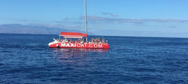 Paseo en catamarán por Costa Adeje