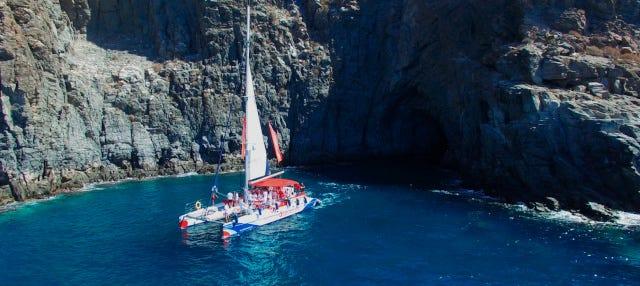 Paseo en catamarán de 3 horas con avistamiento y escucha de cetáceos