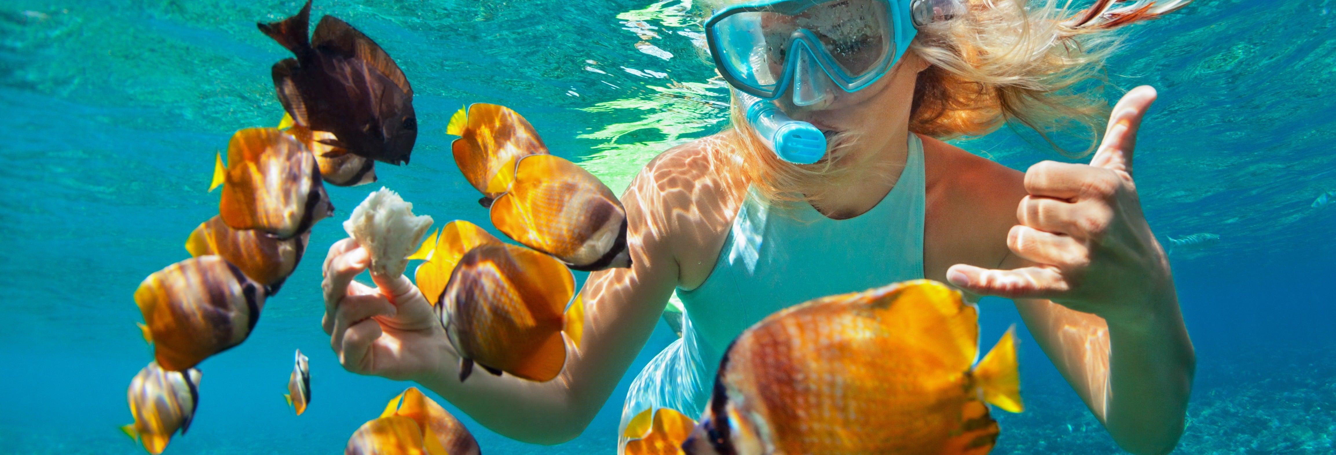 Snorkeling alla Pared di El Palmar