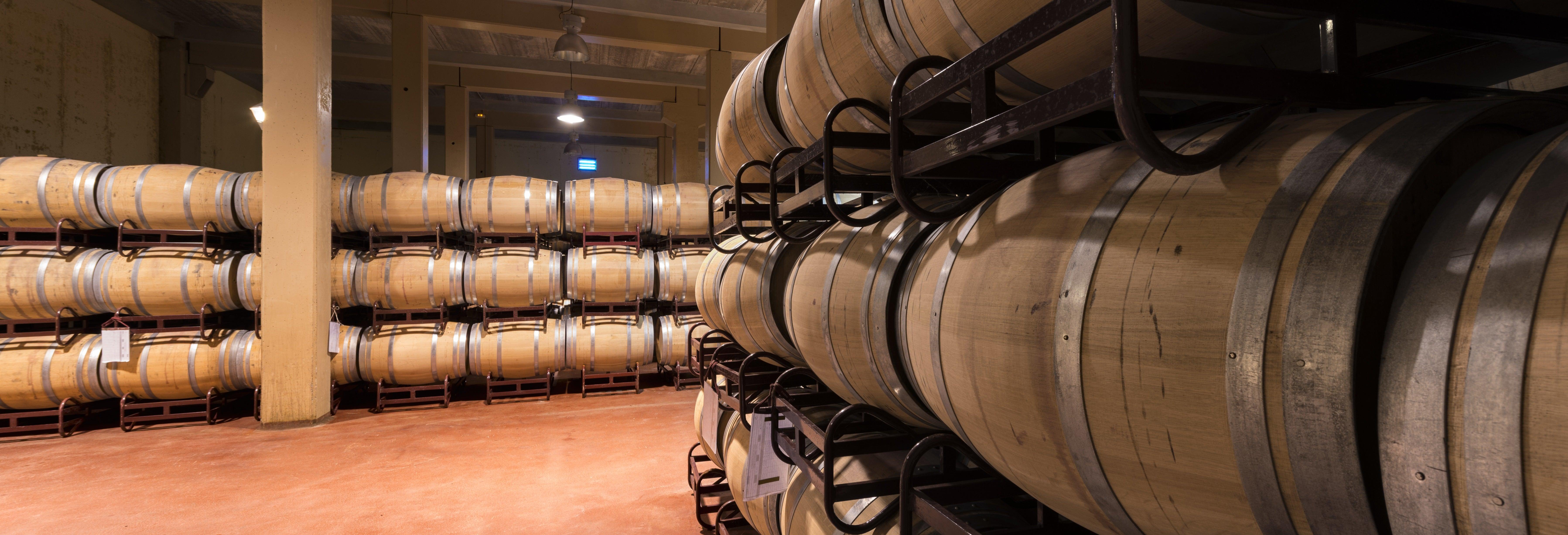 Tour de viñedos y bodegas por La Mancha