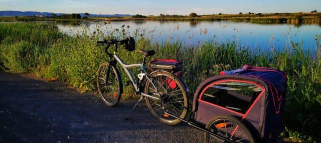 Tour en bicicleta eléctrica por las Tablas de Daimiel