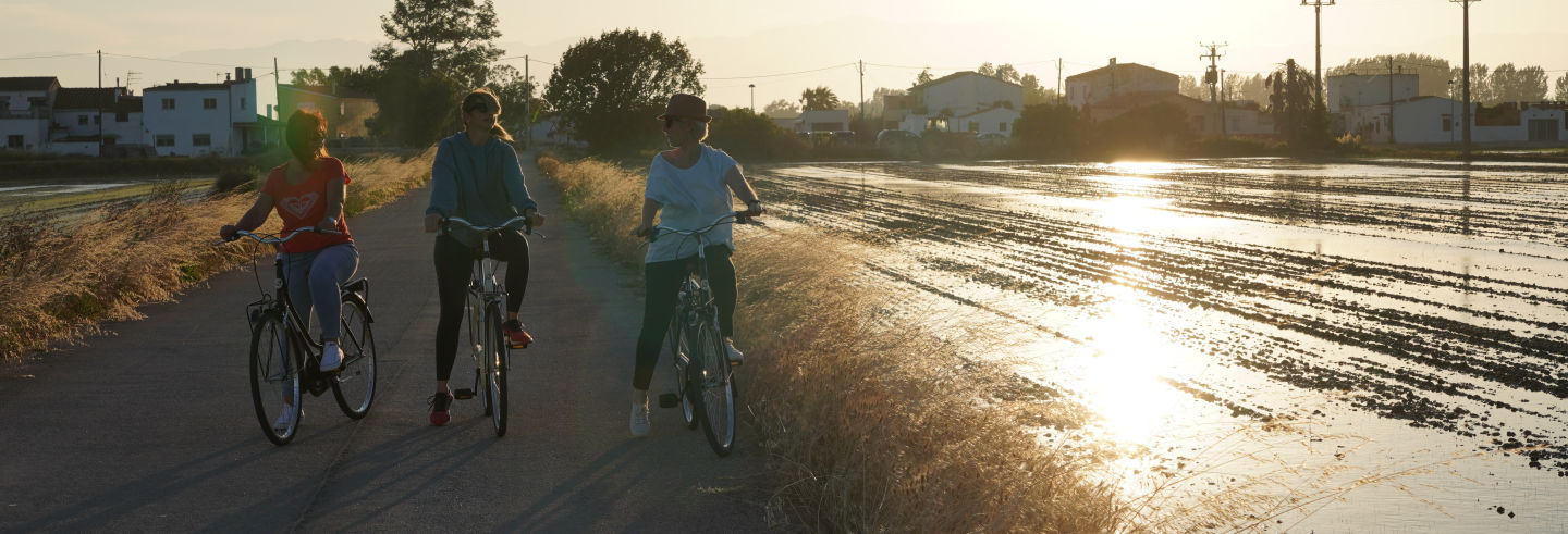 Tour en bicicleta por el Delta del Ebro