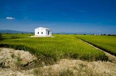 Tour por el Delta del Ebro