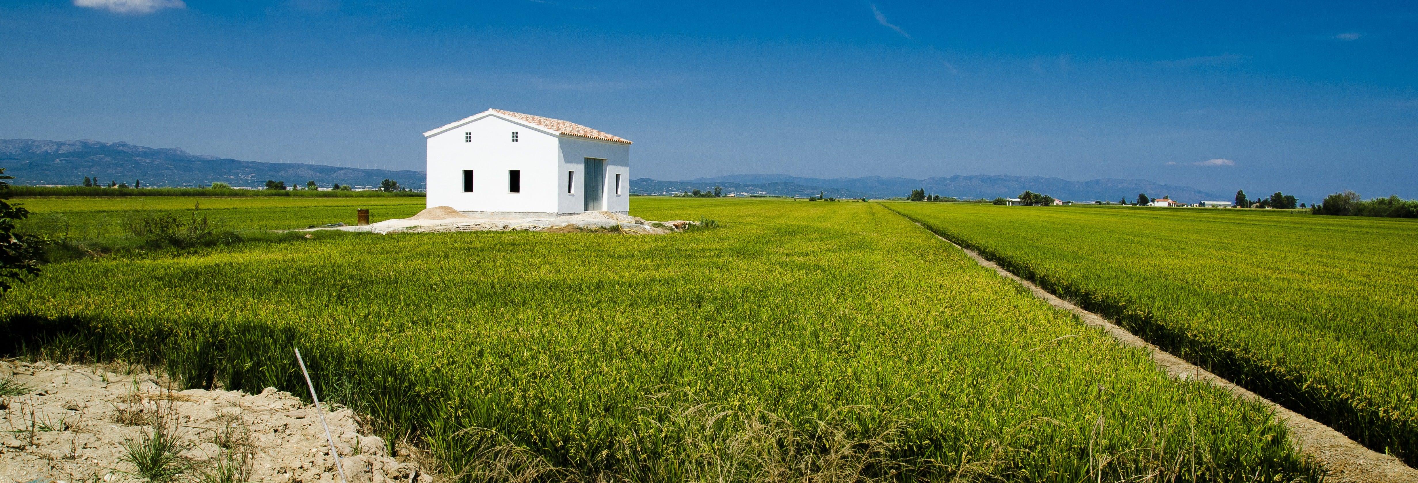 Ebro Delta Tour