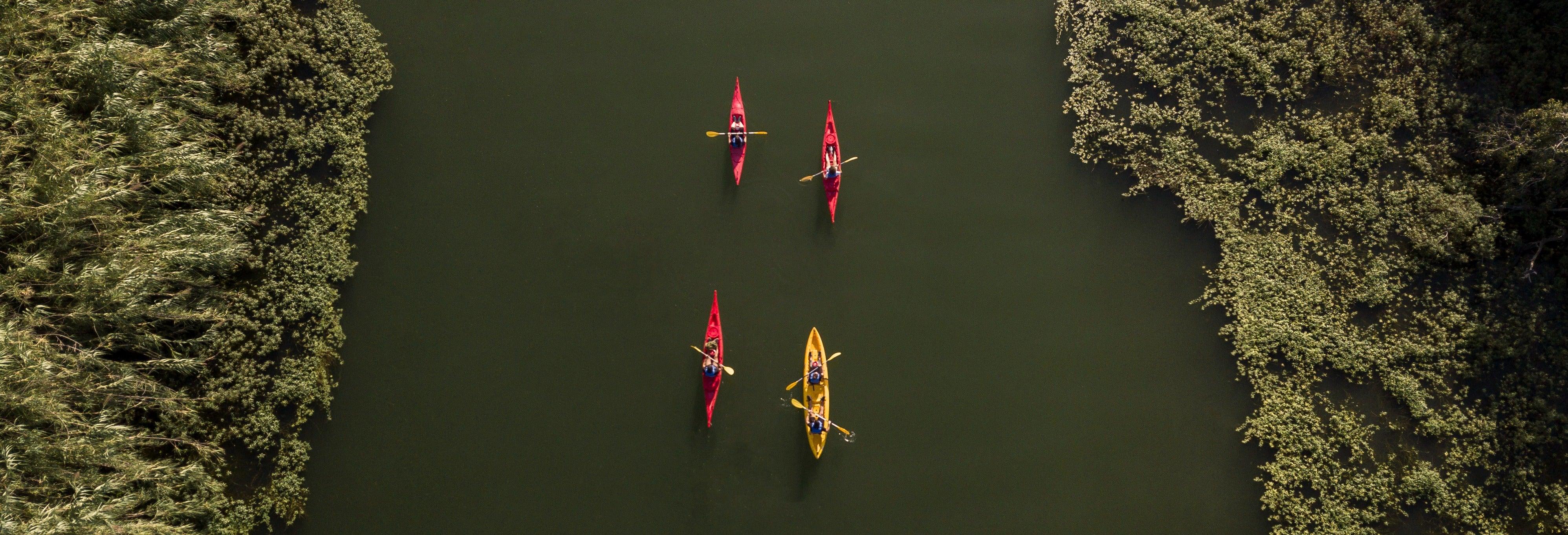 Tour en kayak a la isla de Gracia