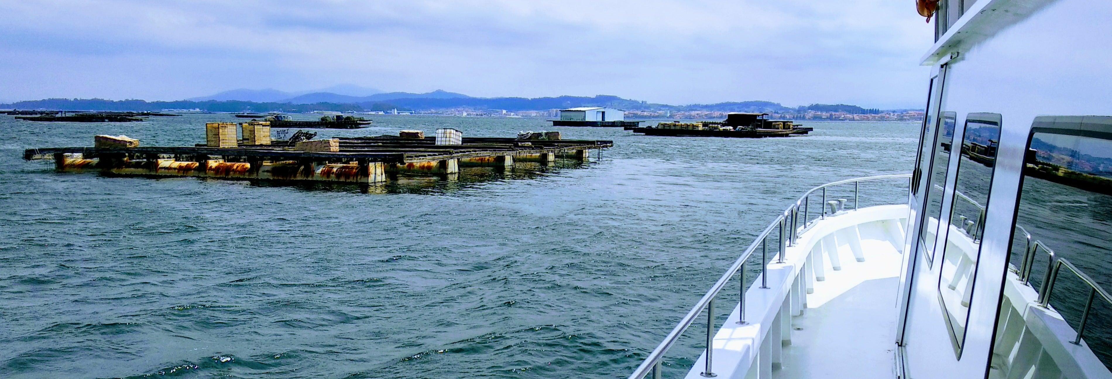 Passeio de barco pela Ria de Arousa com almoço