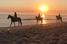 Paseo a caballo por El Palmar de Vejer