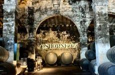 Visita a las Bodegas Osborne