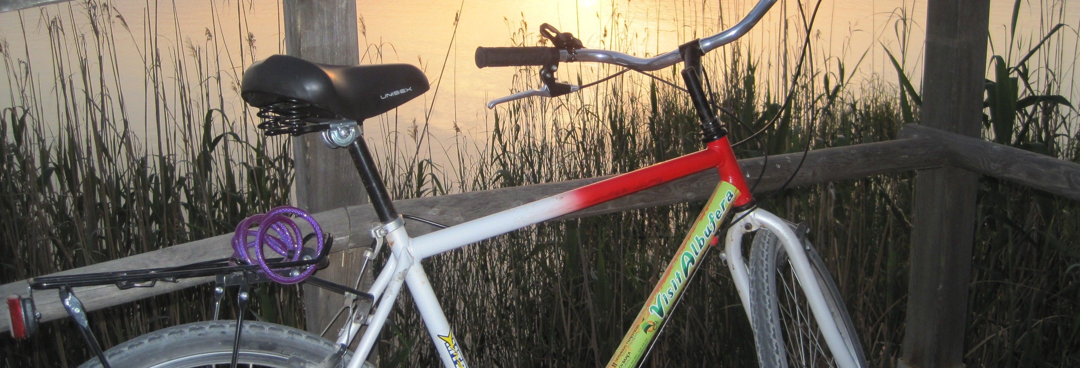 Alquiler de bicicletas en la Albufera + Paseo en barca
