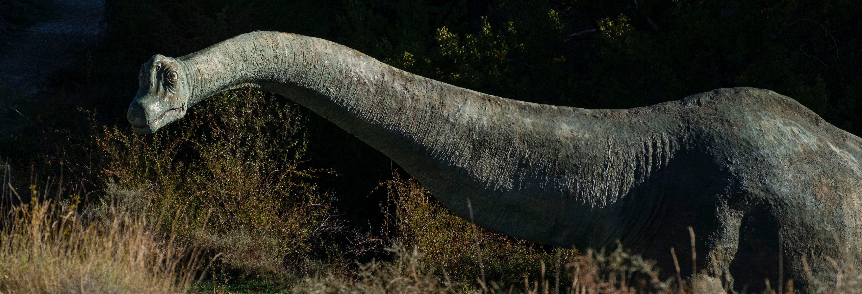 Ruta de los dinosaurios por Enciso
