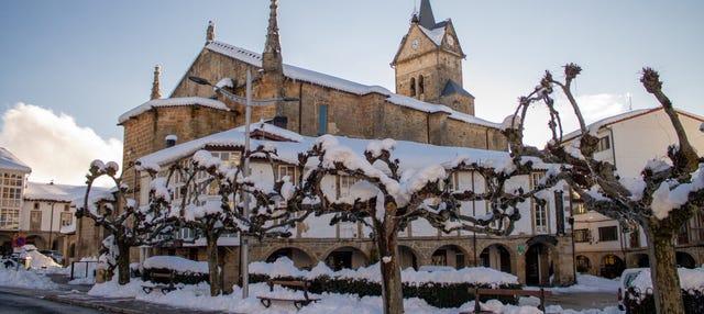 Tour privado por Espinosa de los Monteros