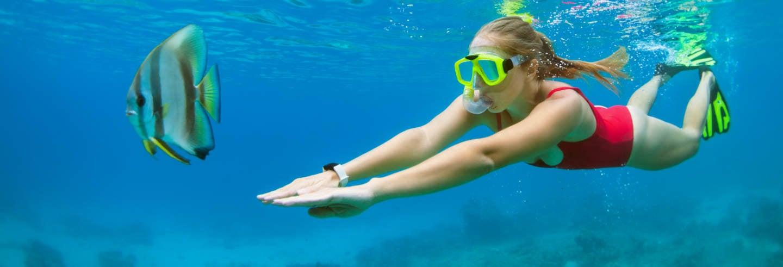 Snorkel nas ilhas Medes