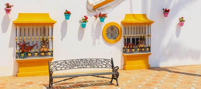 Tour privado por Estepona ¡Tú eliges!