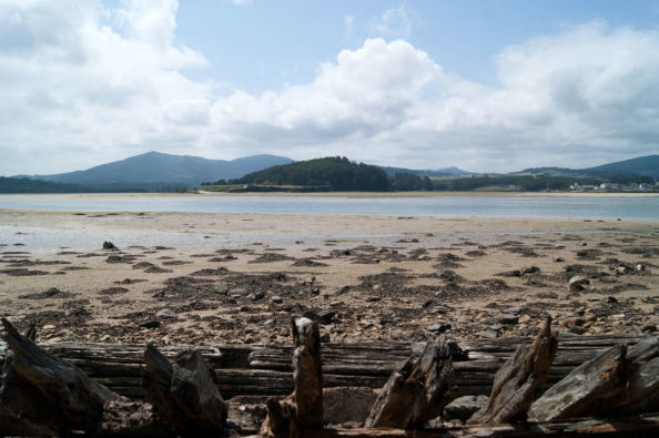 Views of the estuary from the shore