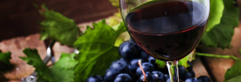La Rioja Wine Tour