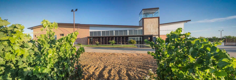 Bodegas Gordonzello Wine Tour