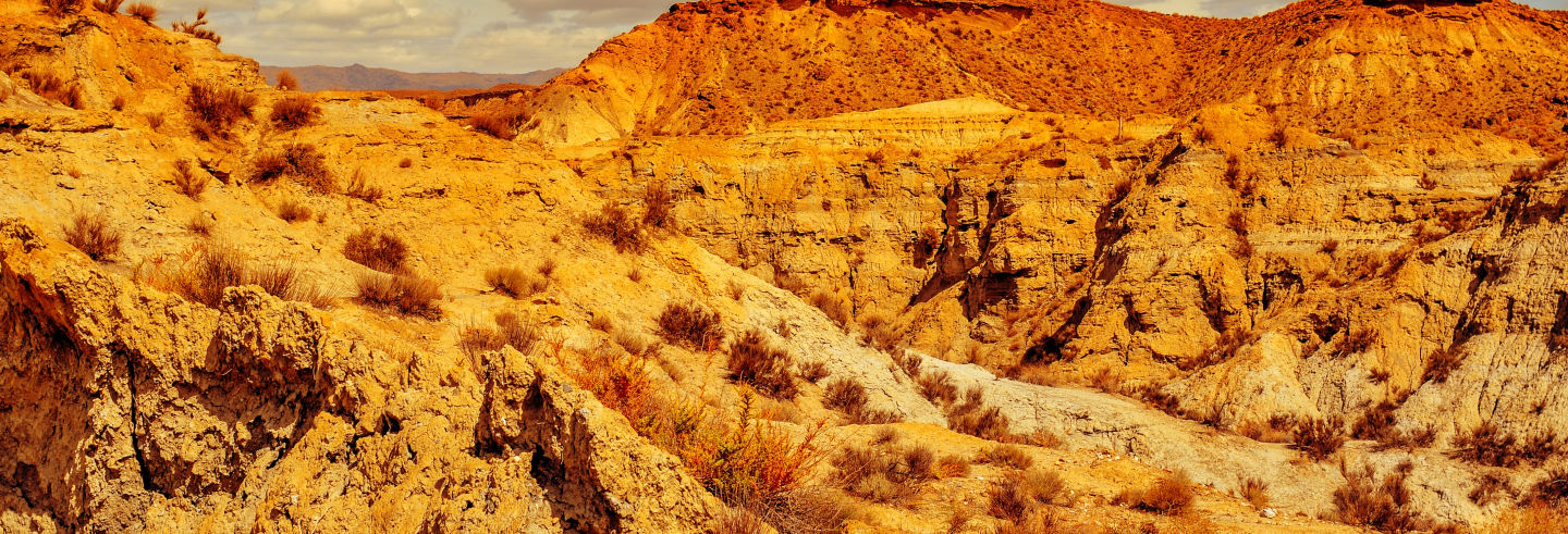 Excursión al desierto de Tabernas y Fort Bravo