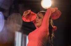 Flamenco y cena en Albaicín: Jardines de Zoraya