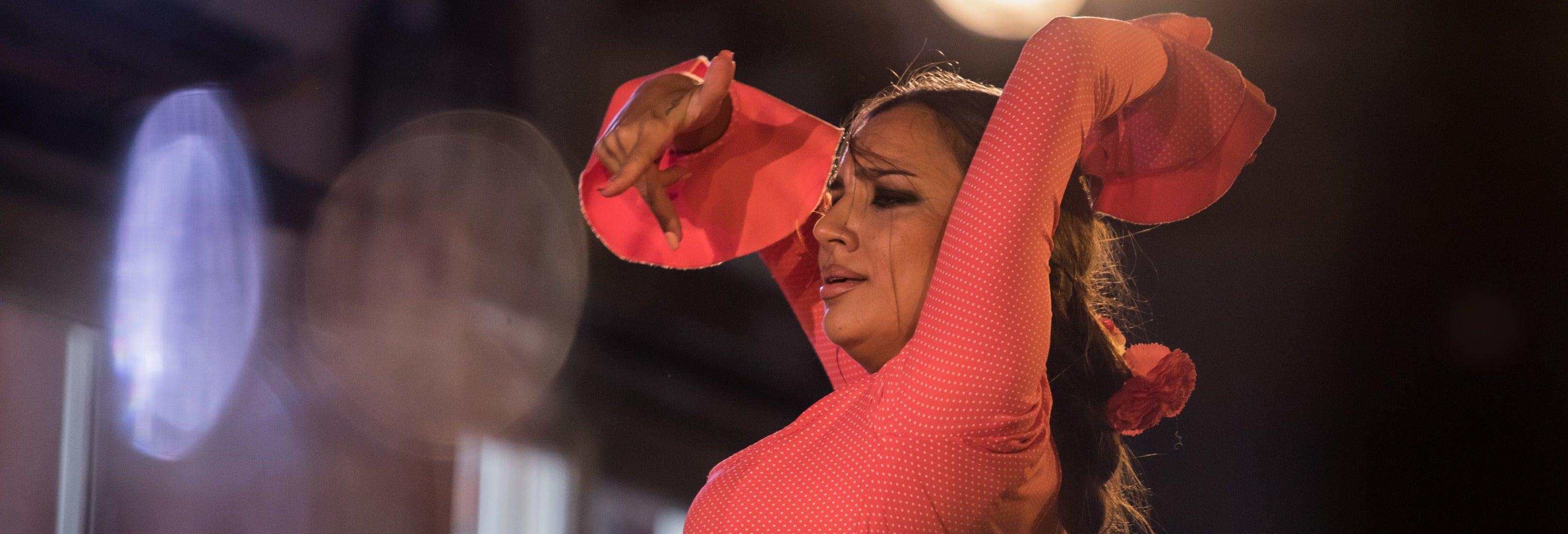 Flamenco e cena all'Albayzín: Jardines de Zoraya