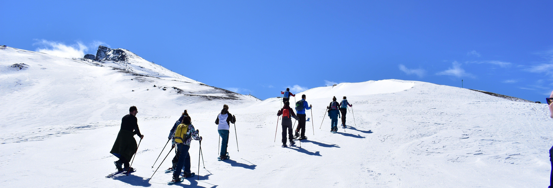 Snowshoe Hike in Sierra Nevada
