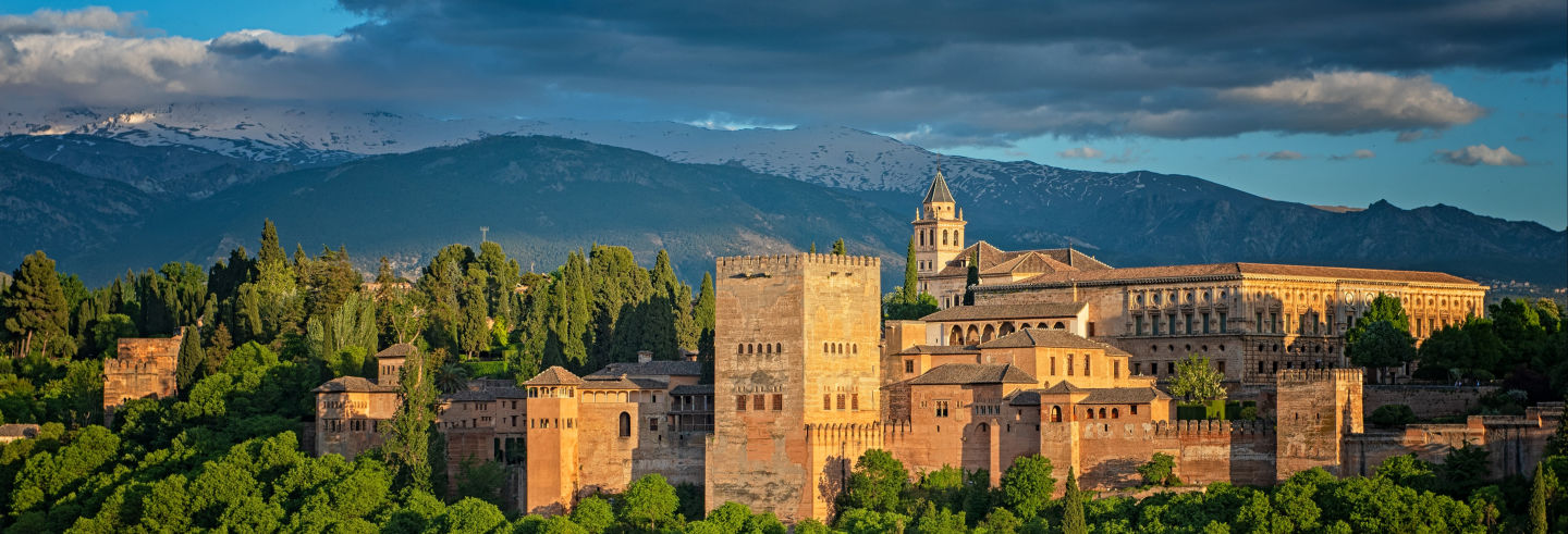 Tour privato dell'Alhambra