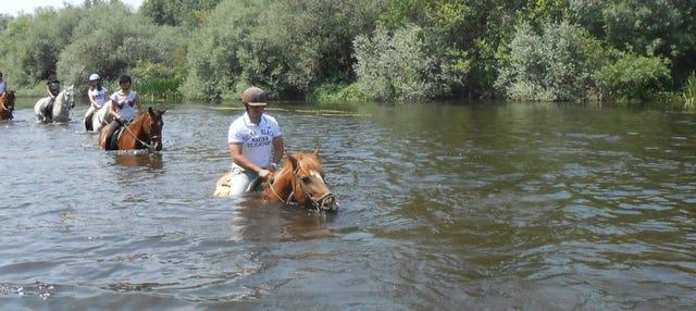 Paseo a caballo por las orillas del río Tormes