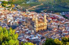 Tour privado por Jaén ¡Tú eliges!
