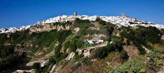 Escursione ai Paesi Bianchi dell'Andalusia