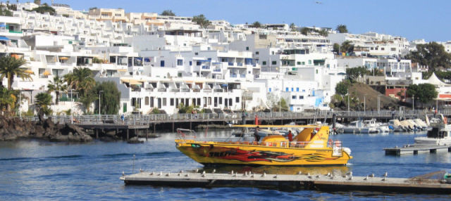 Dolphin Watching and Snorkelling in Lanzarote