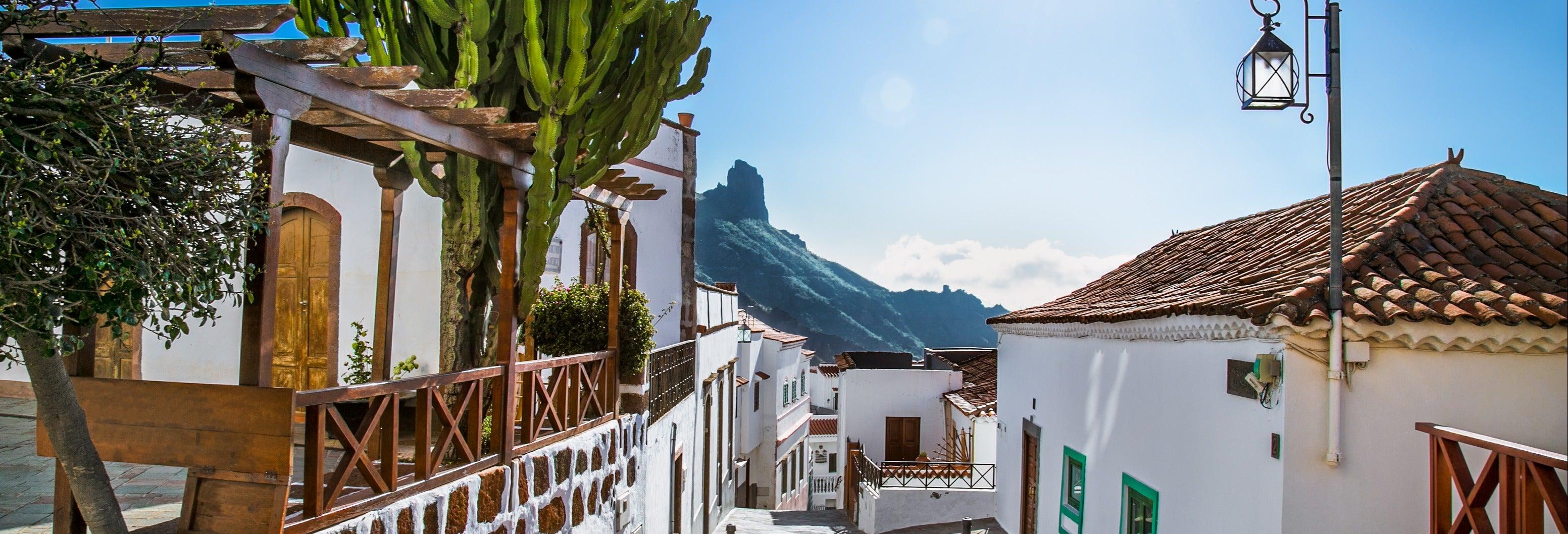Excursión a Tejeda y el Roque Nublo desde Las Palmas