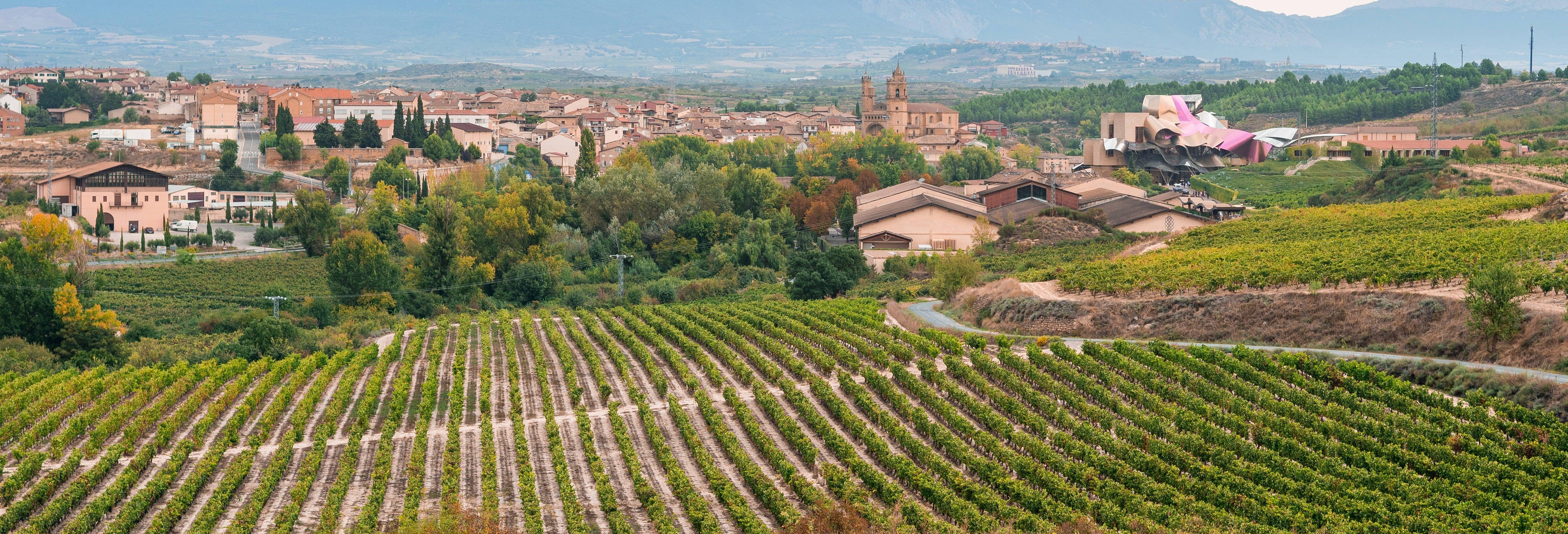 Excursión privada desde Logroño