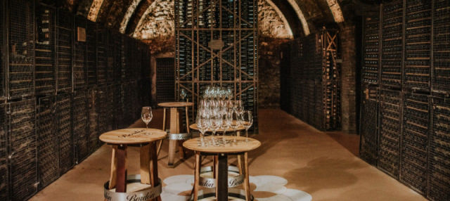 La Rioja Winery Tour