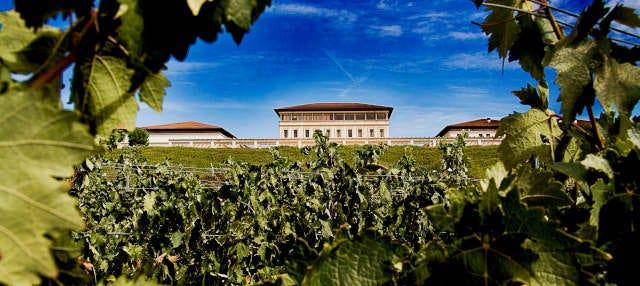 Bodega Rioja Vega Tour