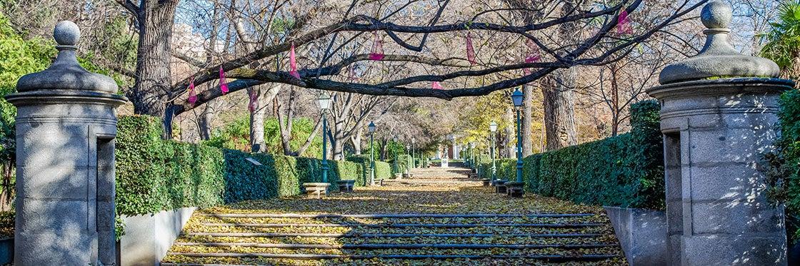 Real Jardim Botânico